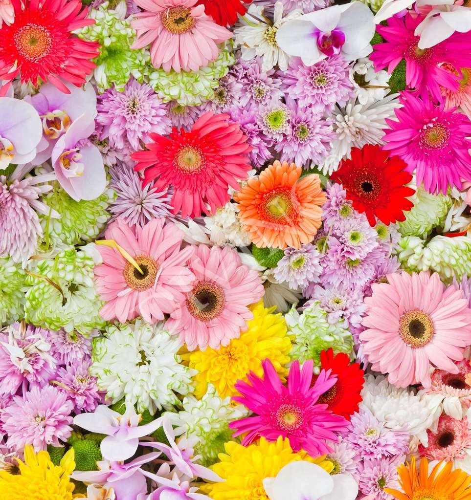 Картинки с розовыми цветами гражданская оборона