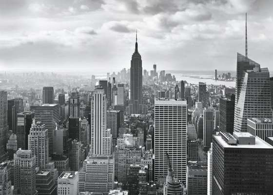 Фотообои Komar 368x254 8-323 NYC Black And White